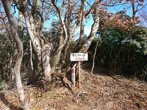 012 竹の畑山