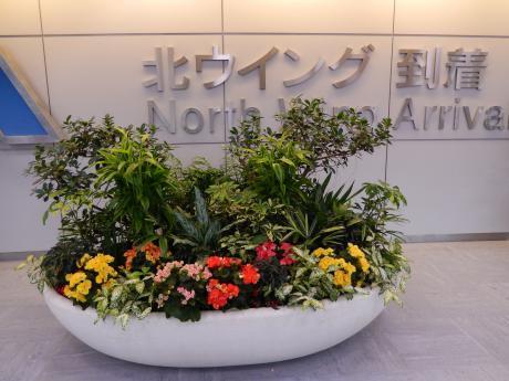 シンガポール2017.3デルタ航空・成田空港