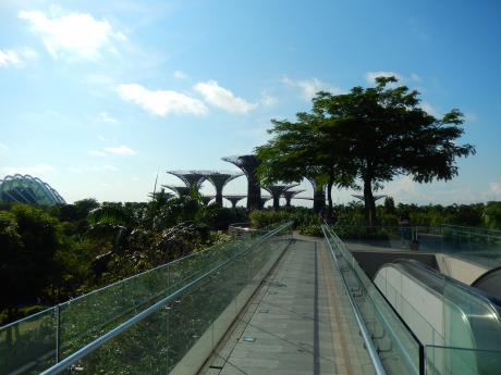 シンガポール2017.5ガーデンバイザベイ