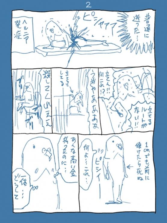 2_20171114222448a33.jpg