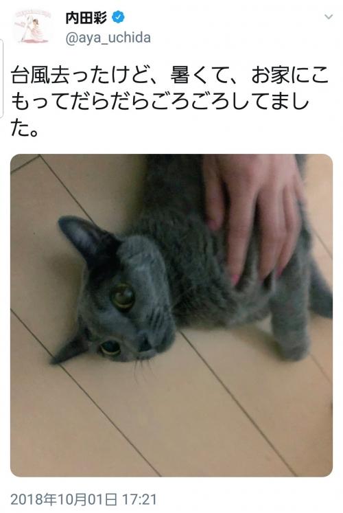 GdPe0J1.jpg