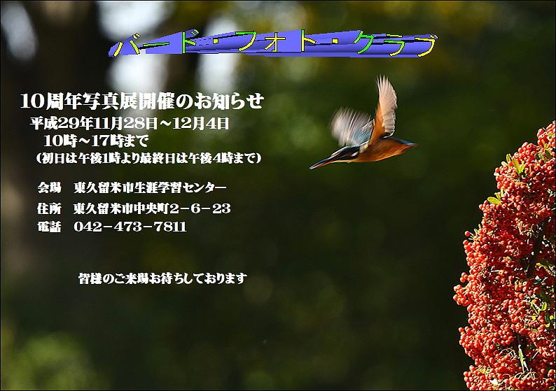 __TITLE__.jpg