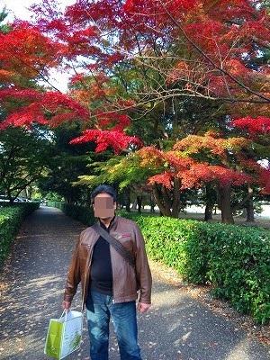 goshiyo-kouyou02