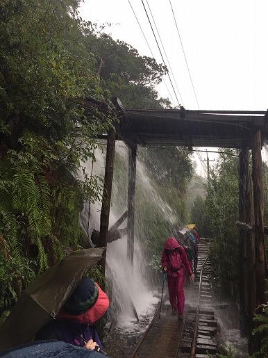雨のトロッコ道