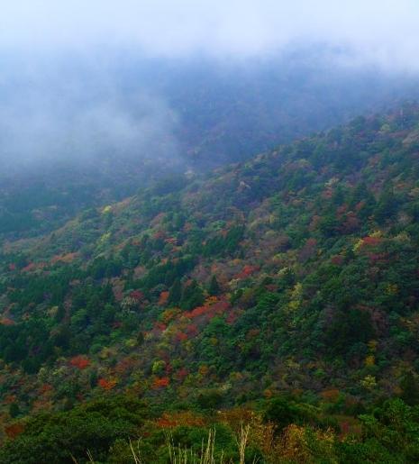 ①太鼓岩から眺める紅葉_R