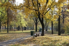 錦秋のハンガリー
