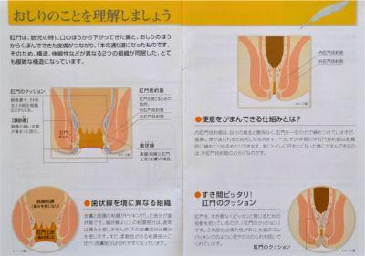 肛門の仕組み