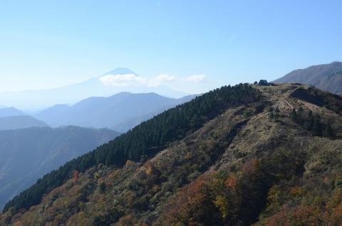 201101 tanzawa 026