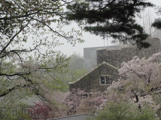 2012年4月23日撮影 延世大のなつかしい風景