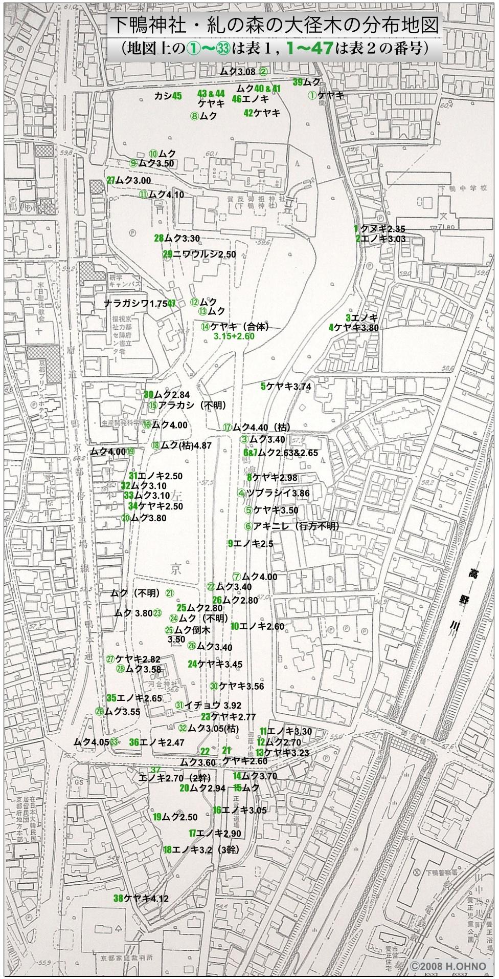 12:下鴨神社:糺の森の大径木分布地図
