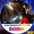 山本彩 LIVE TOUR 2016 Rainbow 11 22@Zepp Namba bd