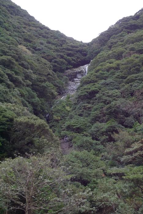 屋久島  2