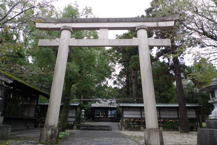 屋久島  26