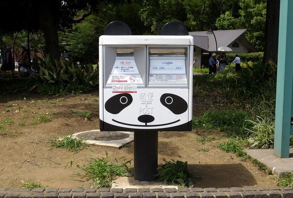 a pandapo rt s
