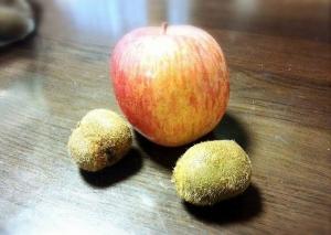 キウイフルーツとリンゴ