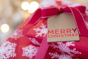 christmas-3024428_960_720.jpg