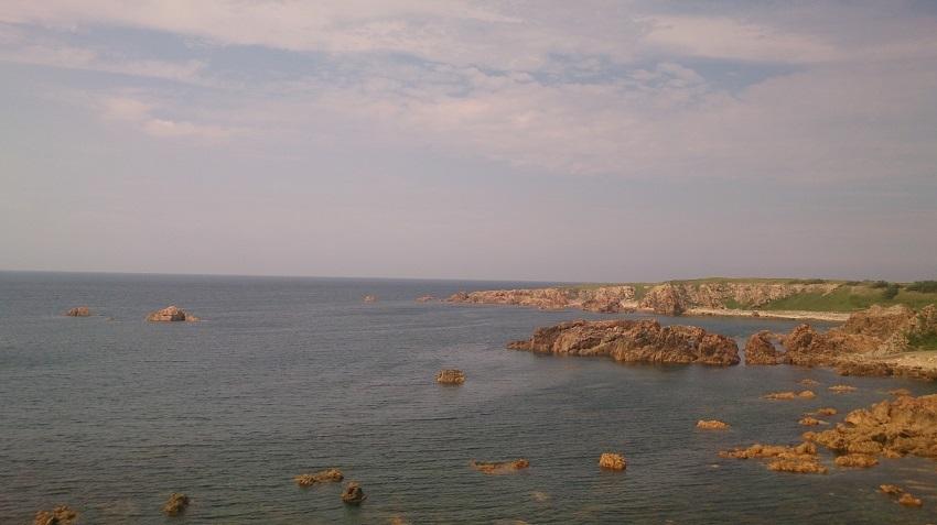 大岩海岸2