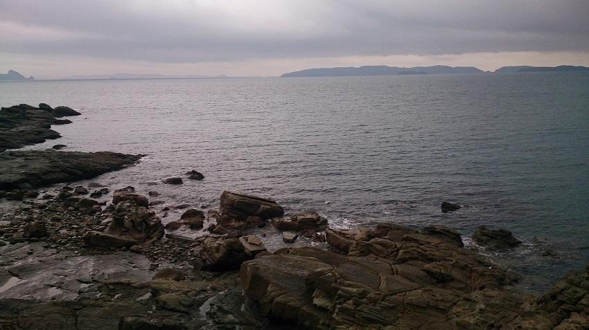 神崎鼻 海中散策2