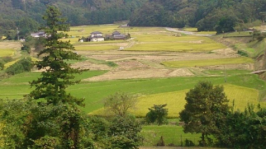田染荘 展望台からの眺め1
