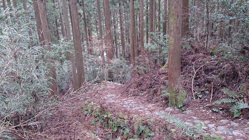 熊野古道 小広峠