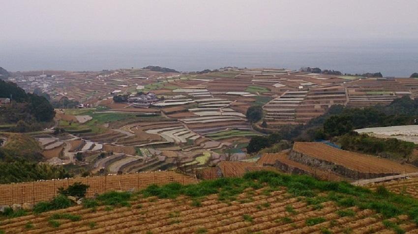 南串山棚畑展望台1
