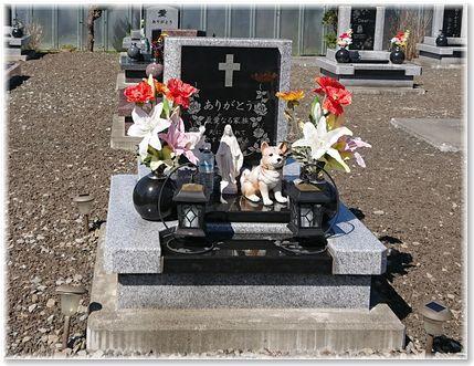 001-お墓170910-0927
