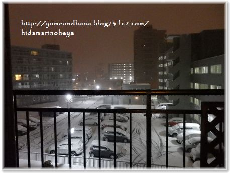 001-雪171118-2357