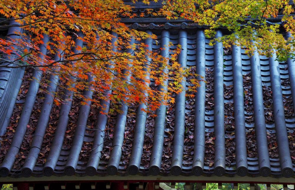 西山金蔵寺2