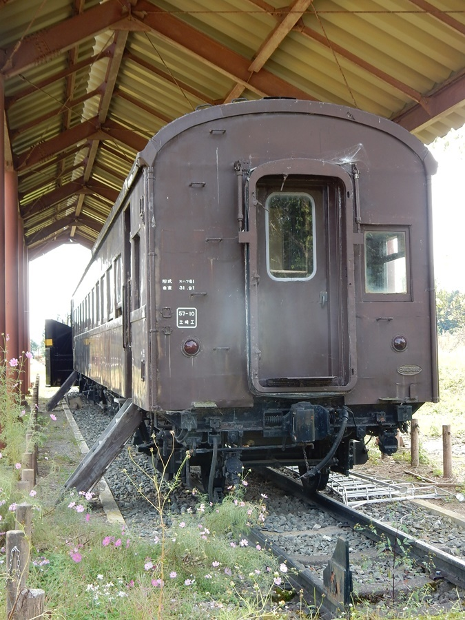 DSCN3371.jpg