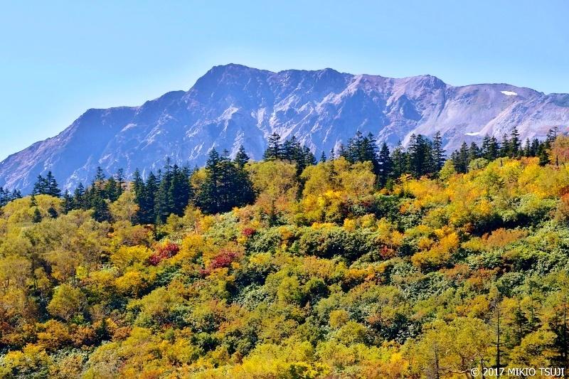絶景探しの旅 - 0369 紅葉と白馬岳 (栂池高原/長野県 小谷村)