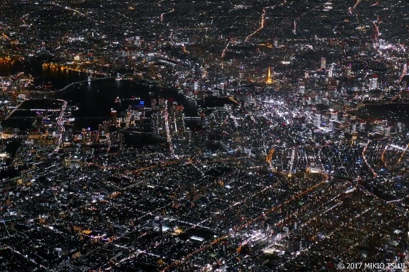 絶景探しの旅 - 0387 東京大都会夜景 (東京上空)
