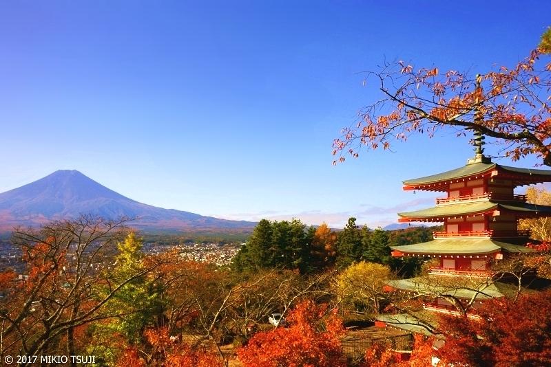 絶景探しの旅 - 0404 秋の富士と五重塔  (新倉山浅間公園/山梨県 富士吉田市)