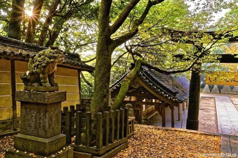 絶景探しの旅 - 0408 金刀比羅宮 秋の境内 (香川県 琴平町)