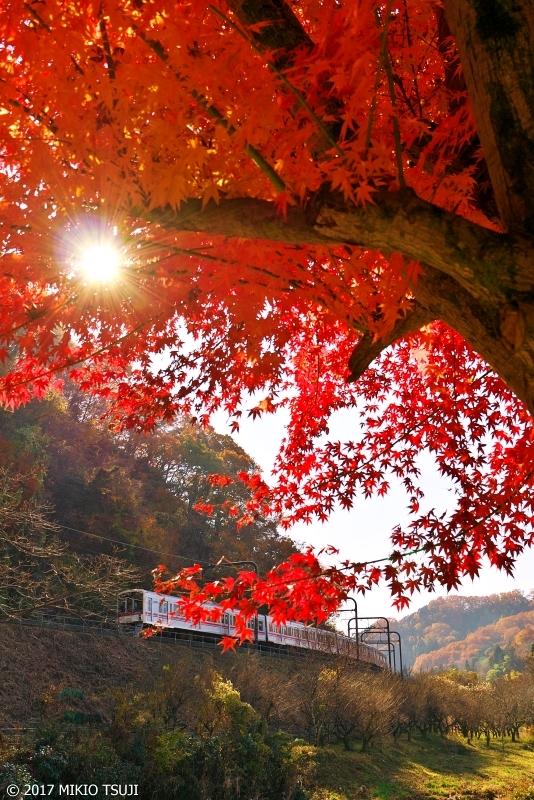 絶景探しの旅 - 0424 紅葉の高尾路 (東京都 八王子市)
