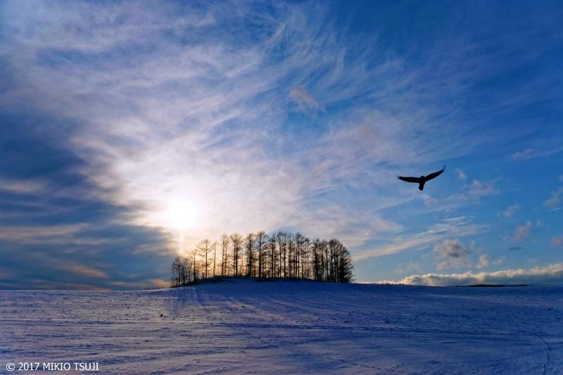 絶景探しの旅 - 0449 青い雪原と沈み行く太陽 (北海道 阿寒町)